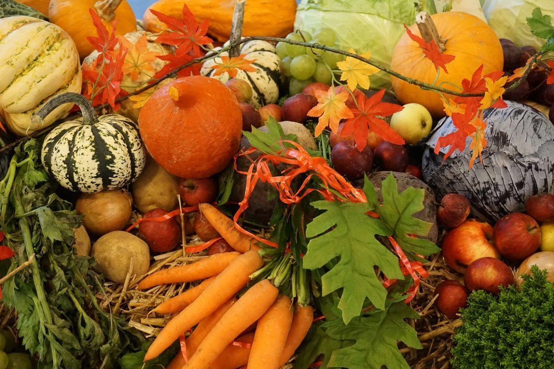 fruits-et-legumes-d-automne[1]