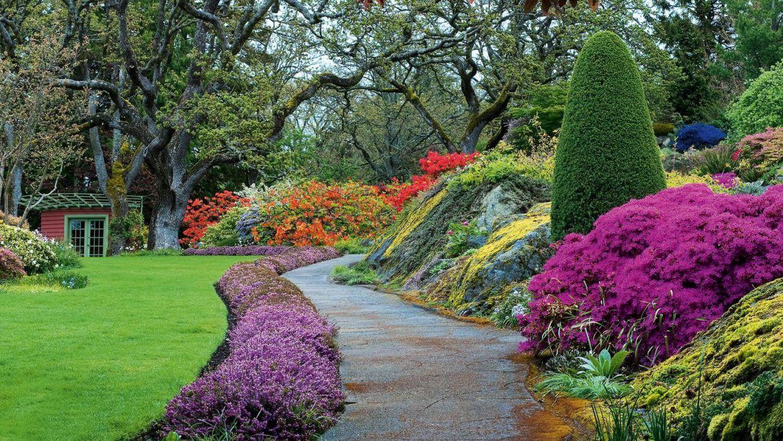 jardin-issu-du-livres-jardins-de-jardiniers-8_5461898[1]